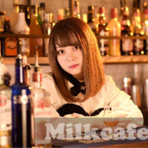 日本橋メイドカフェ ミルクカフェ